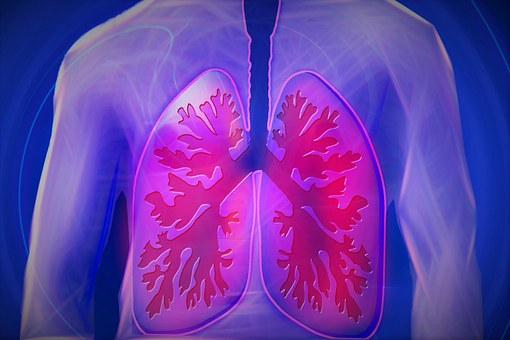 Voeding en COPD